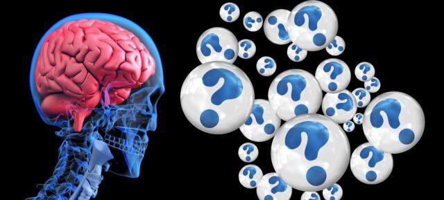brain 2546101 1920 640x289 1