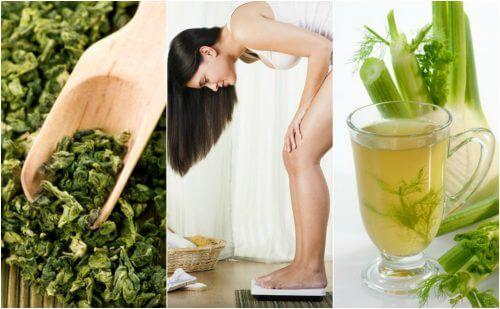 plante medicinale pentru slabit kilogramele