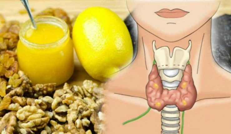 7 alimente care ajuta la imbunatatirea functiei tiroidiene 1024x597 1