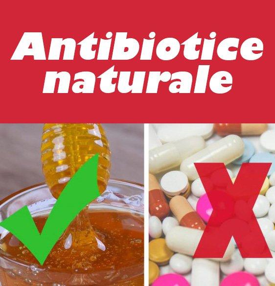 medicamente naturale 740x334 1