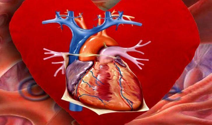 inima fibrilatie 1 727x430 1
